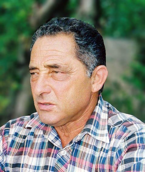 Давид Мааян: Не делите шкуру неубитого верблюда
